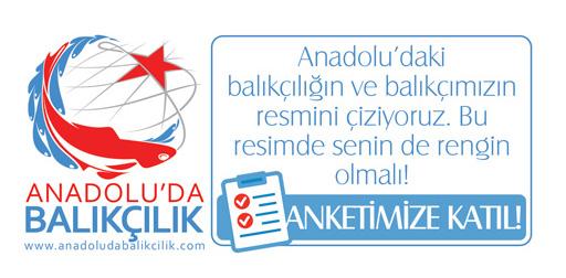 Anadolu'da Balıkçılık anketlerine katıl!