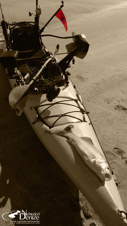 kano ile balıkçılık; kayak ile balıkçılık; kayak fishing turkey; Bahadır Çapar; Nehirden Denize