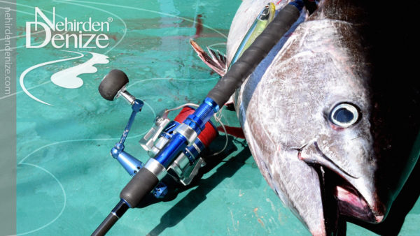 Bahadır Çapar, Tuna angling, Omoto Severo 5000